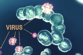Epidemia de gripă a făcut încă o victimă. Lista unităților de învățământ închise