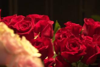 Ziua Îndrăgostiților 2020. Ce reprezintă trandafirul sau laleaua. Poveștile celor mai populare flori