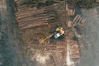 Cea mai nouă metodă prin care hoții de lemne păcălesc Sistemul de Urmărire