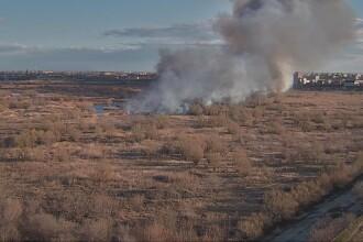 Incendiul din Delta Văcărești a fost stins. Care sunt pagubele