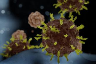 Coronavirus în Germania. 53 de cazuri confirmate, 1.000 de persoane în carantină