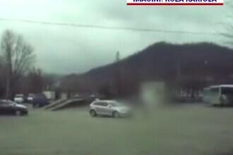 Șofer prins de polițiști după ce a călcat intenționat un câine cu mașina, la Baia Mare