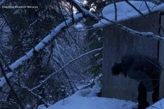 Poveste incredibilă pentru o tânără din Alaska. Ce a pățit când a mers la toaleta din spatele casei