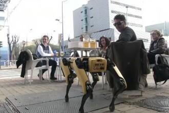 Chelnerii și barmanii, înlocuiți de roboți în mai multe localuri din Sevilla. Ce părere au clienții