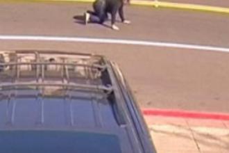 O femeie din California, târâtă zeci de metri de o mașină, după ce atacatorii i-au furat geanta. VIDEO
