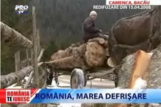 Romania, te iubesc! Marea defrisare: Camenca, Bacau