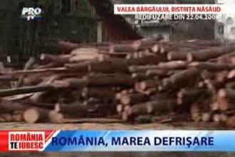 Romania, te iubesc! Marea defrisare in Valea Bargaului, Bistrita Nasaud