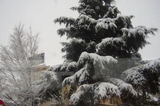 Ce-o avea vremea? Cand ninsoare, cand soare, cand descarcari electrice!