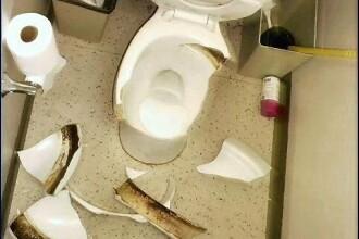 La un pas de moarte: a cazut in toaleta scolii!!!