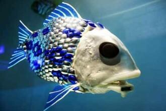 Japonezii vor studia viata marina cu ajutorul robo-pestelui