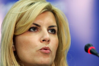 Udrea, despre intrarea lui Iohannis in PNL: Miscare de imagine a lui Antonescu; un fault la PSD