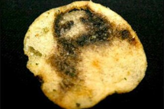 Cele mai ciudate locuri unde a aparut Isus: de la banane, la felii de paine