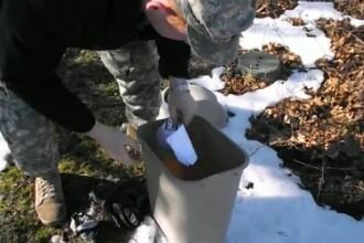 VIDEO. Un soricel este inhatat de un uliu, la scurt timp dupa ce este eliberat intr-un parc