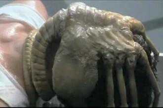 FOTO. O creatura ciudata, care seamana cu extraterestrul din filmul Alien, expusa la muzeu