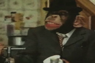 Drama cimpanzeului Choopers, care trebuie sa invete din nou sa se comporte ca o maimuta. VIDEO