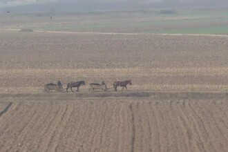 Fratia fermierilor. Reportaj in locurile din Romania unde proprietarii au invatat ca unde-s multi, puterea creste