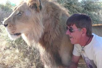 Povestea impresionanta din spatele acestei imagini. Ce se intampla cand un leu e cel mai bun prieten al omului - VIDEO