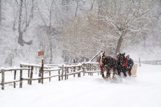 Vremea ramane rece, dar ninsorile se restrang si apare soarele in mai multe regiuni. Prognoza meteo pana vineri
