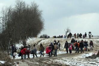 Inchiderea migrantilor musulmani in tabere pentru a preveni terorismul sexual. Propunerea liderului extremei drepte olandeze