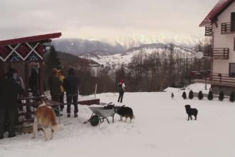 Vacanta inedita de Revelion, la o cabana izolata din munti. Cat a platit fiecare familie pentru cinci zile cu prietenii