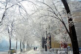 Cod galben de ninsori si viscol in Bucuresti si 9 judete, pana joi. In Capitala, stratul de zapada ar putea atinge 10 cm