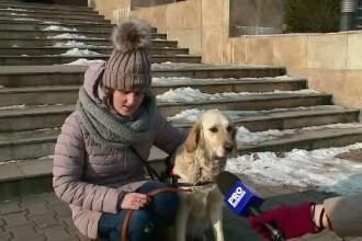 Mii de orbi in Romania si doar 10 caini insotitori. Cat de important e sa-l aiba alaturi pe
