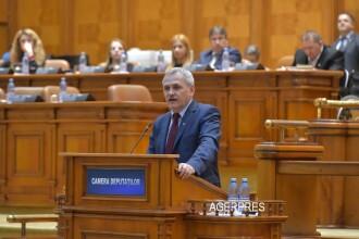 Liviu Dragnea vrea sa organizeze doua referendumuri.