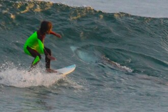 Un baietel de zece ani a trecut cu placa de surf peste un rechin alb de trei metri. Tatal sau a fost cel care a observat