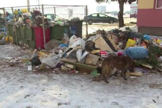 Un oras din Romania, sufocat de gunoaie din cauza scandalului dintre primarie si firma de salubritate