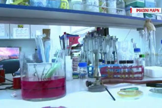 """Institutul Cantacuzino, în lupta cu coronavirusul. Procesează """"250 de probe pe zi"""""""