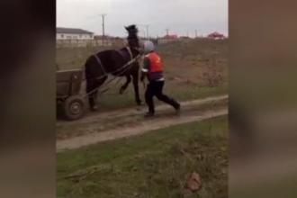 Imagini scandaloase în Galați. Doi bărbați au chinuit trei cai pentru propria distracție