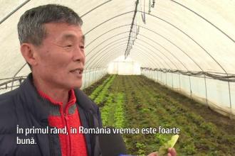 """Afacerea de succes deschisă de un coreean la noi în țară. """"România este foarte bine"""""""