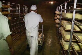 """Brânză produsă într-o peşteră, """"salvată"""" de fermierii din Cluj. Este unică în lume"""