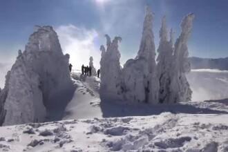 Peisaj ca în basme la munte, oferit de stratul de omăt înghețat: