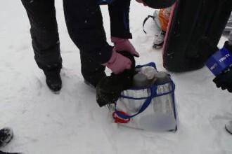 În loc de limuzine şi blănuri, turiştii moldoveni vin cu mâncare de acasă în sacoşe