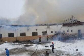 """Incendiu puternic într-o clădire din Vrancea. Primar: """"A luat foc Primăria!"""""""