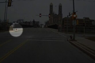 Ce a observat șoferița unui autobuz pe marginea drumului. Imaginile fac înconjurul lumii