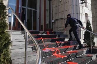 """APADOR-CH consideră """"ridicol excesul de zel al poliției"""" în cazul protestului cu vopsea"""