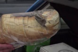 Pâine ambalată cu un șoarece mort, cumpărată din Vaslui: