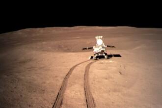 Chinezii au crescut o plantă de bumbac pe Lună. Vor să producă şi cartofi