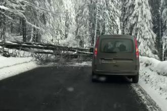 Haos în țară din cauza zăpezilor. Un tânăr a murit, iar multe drumuri sunt blocate