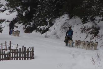 Reacția a doi turiști din Insulele Feroe ajunși la polul frigului din România