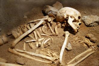 Rămășițele unei persoane care a trăit acum 400 de ani, descoperite în beciul unui bloc