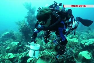 Prima transmisie LIVE din adâncul oceanului. Scafandrii vor coborî în