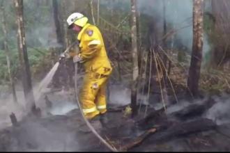53 de incendii au avut loc în Australia din cauza căldurii