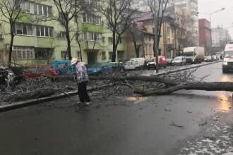 """Dezastru pe străzi și pe trotuare, după valul de gheață. Oameni răniți și copaci """"sparți"""""""