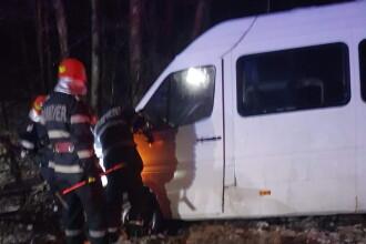 Un copac căzut pe A1 a provocat un accident rutier. 6 oameni au fost răniți