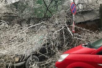89 mașini avariate, în Capitală, în ultimele 24 de ore din cauza vremii severe