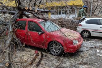 Freezing rain. Primăria S4 îi va ajuta pe șoferi cu dosarele pentru despăgubiri