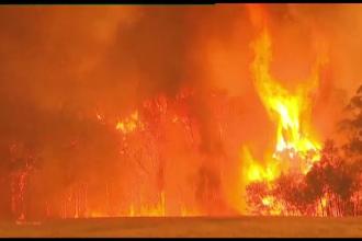 EXCLUSIV: Mărturii dramatice ale românilor din iadul de foc din Australia
